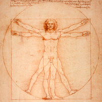 kinesologia-holistica-salud-natural