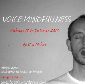 VoiceMindfulness
